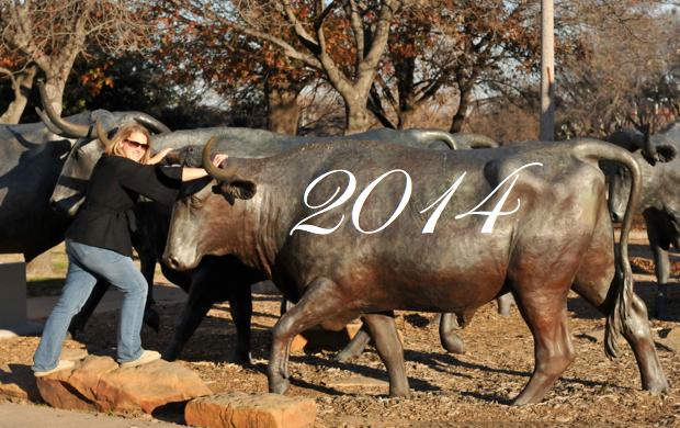 I've got this bull by the horns!